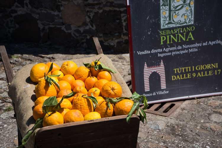 milis oranges